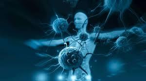 PROROGA BANDO DI GARA PER L'ASSEGNAZIONE DI 5 BORSE DI STUDIO A GIOVANI LAUREATI IN MEDICINA E CHIRURGIA O BIOLOGIA